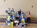 mini volleymania